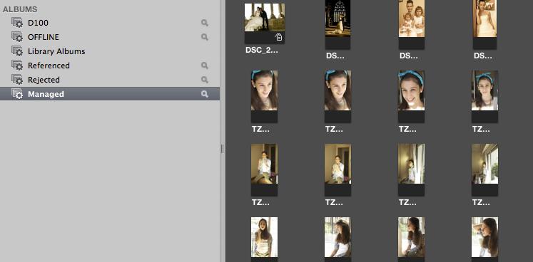Es importante saber organizar bien tu banco de imágenes